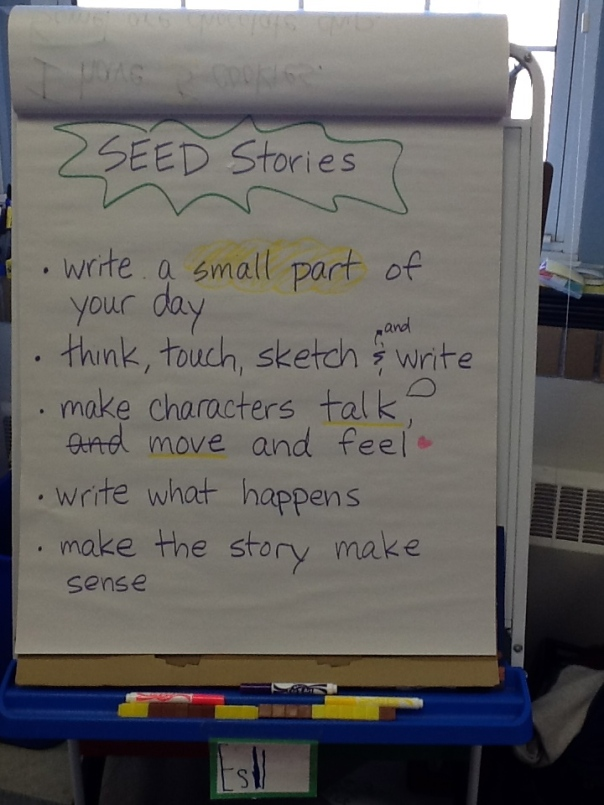 Before writing, we made a list of what we know about writing seed stories.