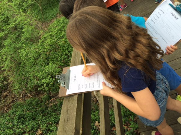 Molly collected data during our walk in the Robinson woods.
