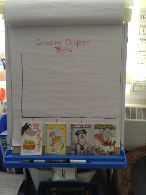 WE used what we know about data to make a graph about which chapter book we wanted to read next.
