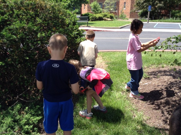 More children found natural objects to photograph to bring back to our room.