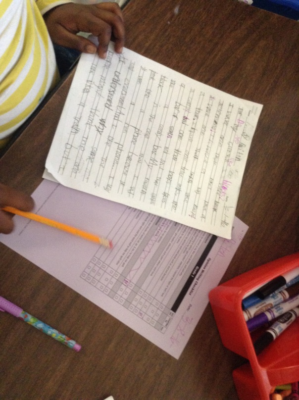 This author used her writing checklist to edit her persuasive piece.