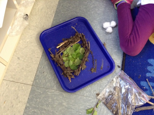 Check out this amazing nest, created by a first grade scientist.