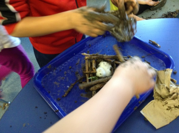 First grade scientists created their nest, with very much thought to the structure and function.