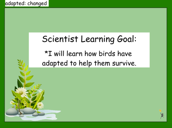 This was our learning goal as we explored animal adaptations.