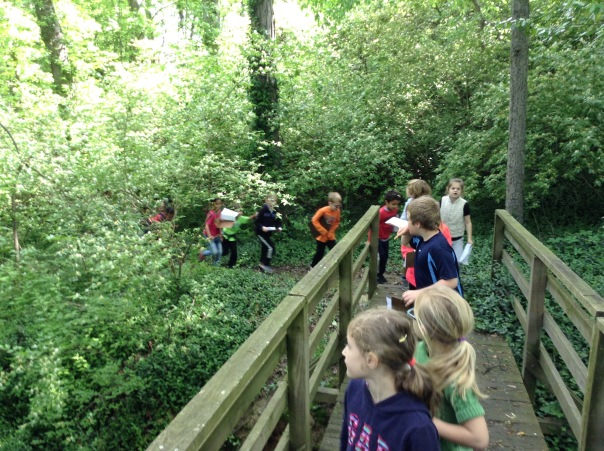We went on a nature walk looking for cause and effect in nature. We found some amazing examples!