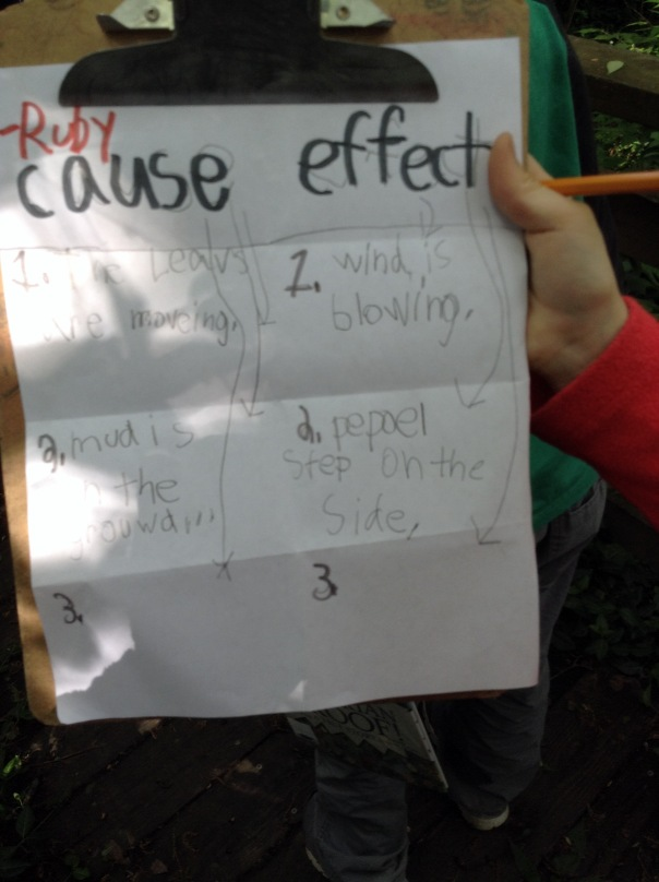 Check out Ruby's example of cause and effect during our walk!