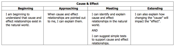 This is the rubric descriptor for cause and effect in science.