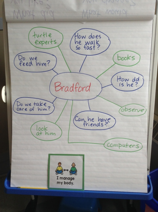 This includes a small sample of some of the questions (blue writing) we have about Bradford, as well as ways we can find answers (green writing).