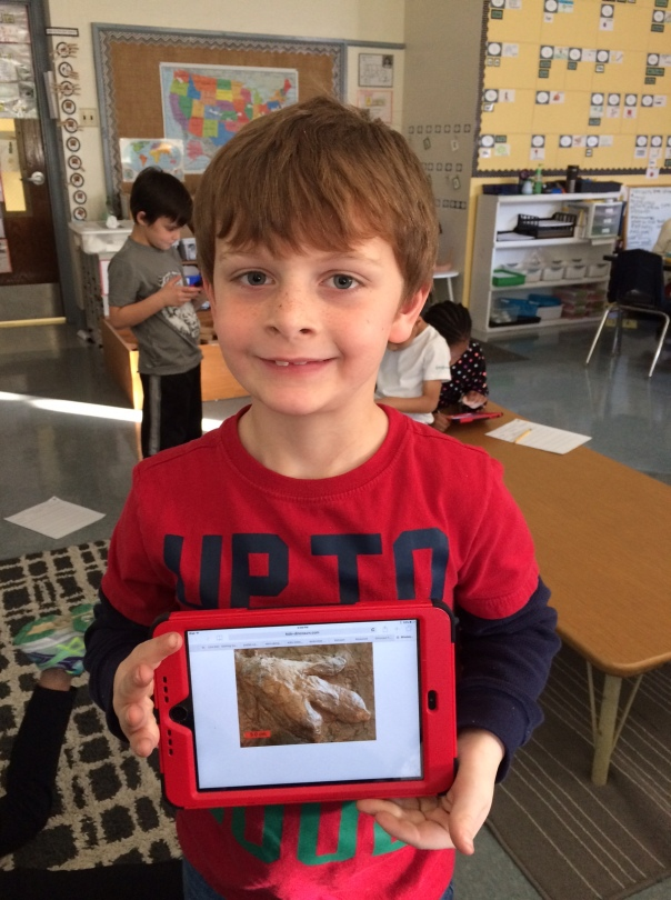 Zach found an awesome dinosaur footprint while he was researching! Look at how exited he was to share it with us!