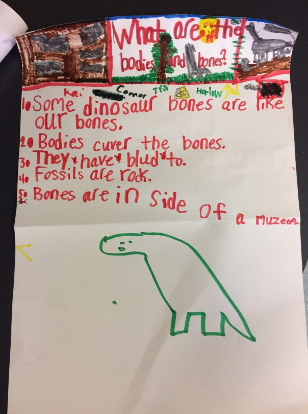 Look at this poster that one group made to teach about dinosaurs.