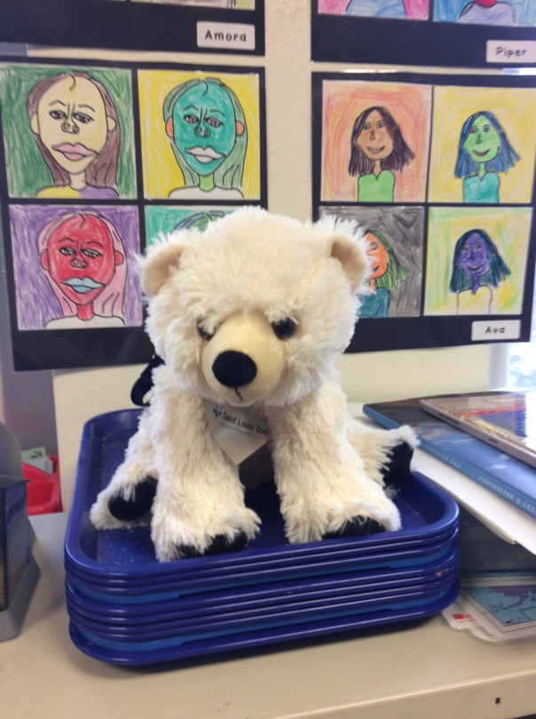 Here is our newest addition to our classroom, who will receive a name very soon!
