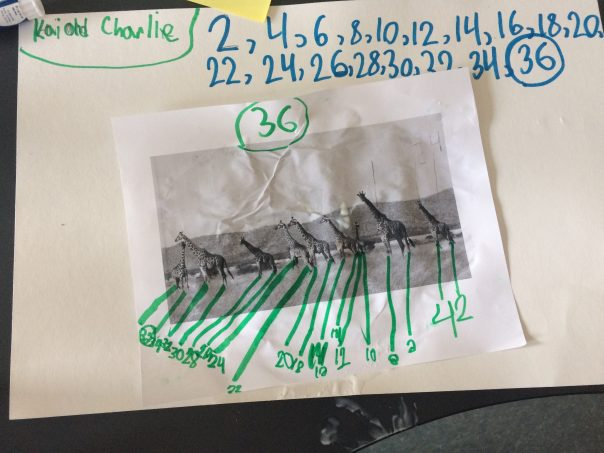 Check out the math thinking from Kai and Charlie about the number of legs on the giraffes.